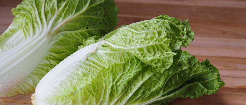白菜の薬膳的効能と使い方