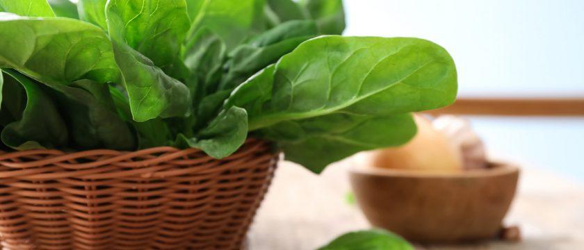 ほうれん草の薬膳的効能と使い方