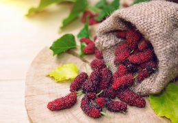 桑の実の薬膳的効能と使い方