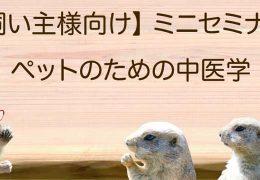【飼い主様向け】中医学ミニセミナーを全国の会員動物病院で開催しています