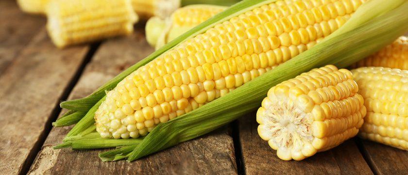 トウモロコシの薬膳的効能と使い方