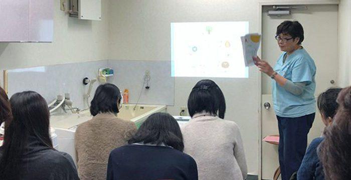 みなみ成城動物病院にて【飼い主様向け】中医学ミニセミナーを開催しました