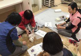 沢村獣医科病院統合医療センターにて【飼い主様向け】温灸教室を開催しました